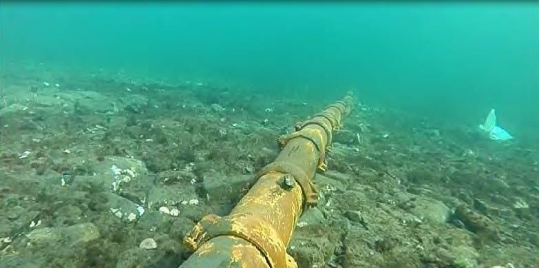 Podmorské káble a žraloky